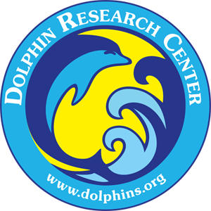 DolphinResearchCenter-1
